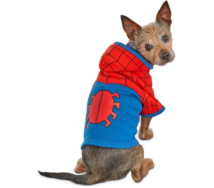 Best Pet Halloween Costumes. Spider-Man Dog Costume.
