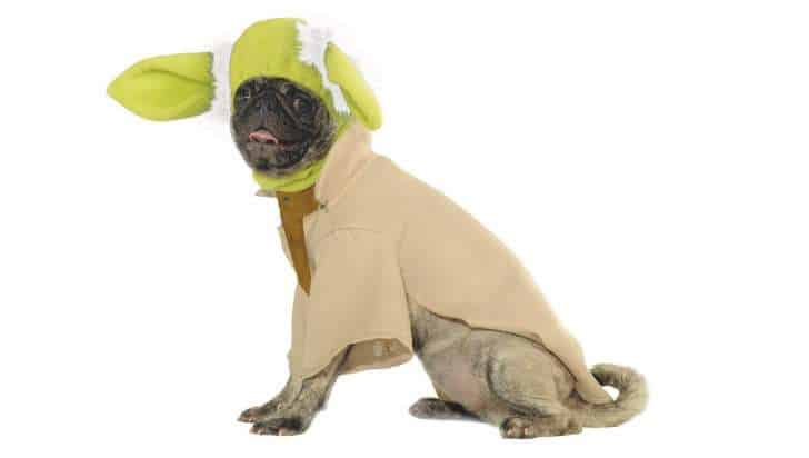 Yoda Halloween costume for pets.