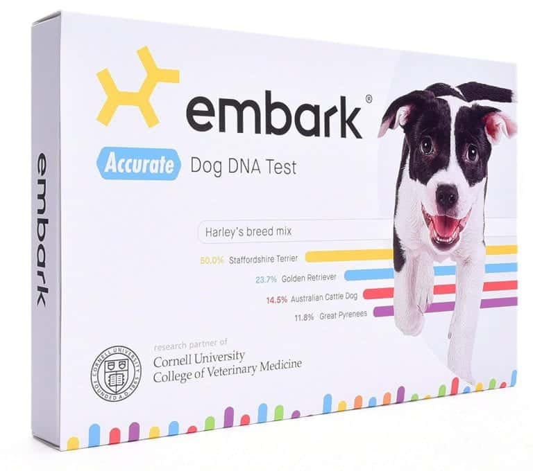 Oprah's Favorite Things List 2019: Embark Dog DNA Kit 2020